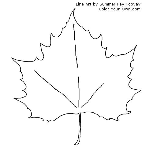 Maple leaf coloring page for Coloring page of a maple leaf