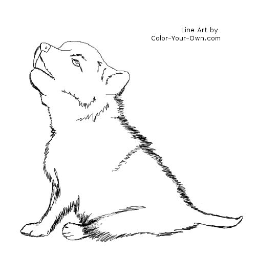 Wolf Coloring Pages - GetColoringPages.com | 500x500